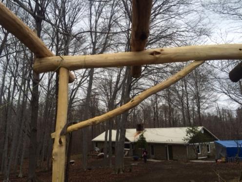 NE seedhouse frame
