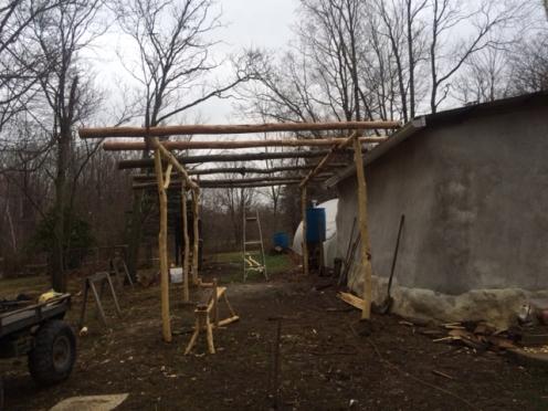 seedhouse shed frame
