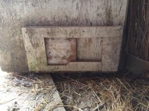 Chicken door closed