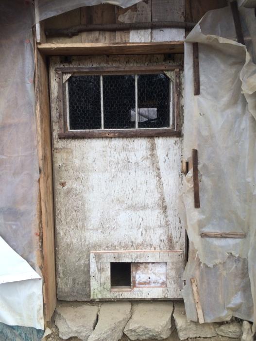 Coop door