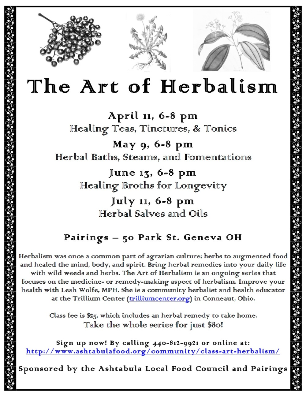 Art of Herbalism Series.jpg