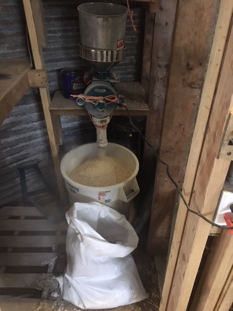 feed grinder